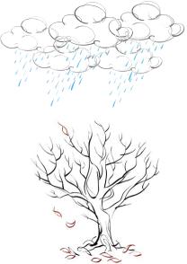酸性雨の原因