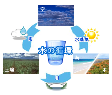 完全な水循環