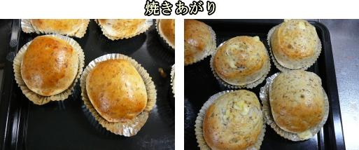 マリアアザミ(ミルクシスル)パンの試作品の完成