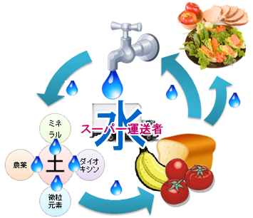 水の循環サイクル