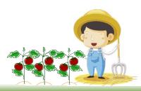 農業//気まぐれブログ