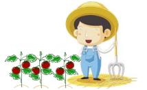 農業ブログ/所長のつぶやき